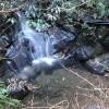 Reinstes Wasser