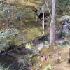 Bambus-Wasserstrasse