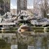 Kleiner Froschbrunnen