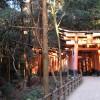 Weitere Torii-Tunnel
